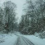 winter on #25